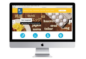 BC Egg - Website